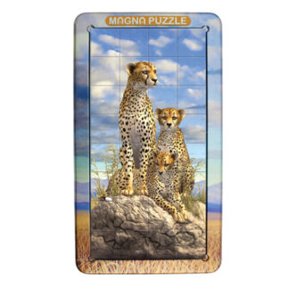 3D Magnetpusle leopardid