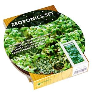 Kress-salati taimekasvatus