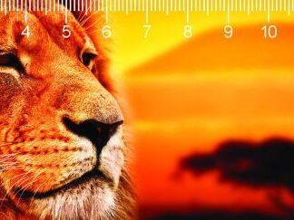 "3D joonlaud ""Lõvi"""