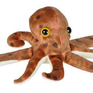 """Kallistaja """"Kaheksajalg"""""""
