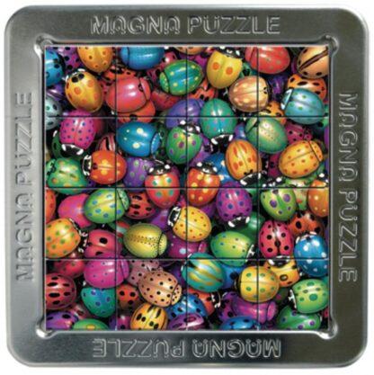 Magnetpusle Putukad