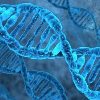 """3D postkaart """"DNA"""""""