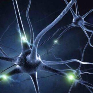"""3D postkaart """"Neuron"""""""