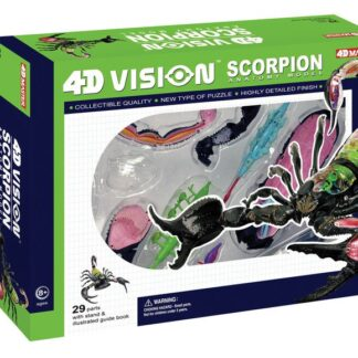 4D Anatoomiamudel Skorpion