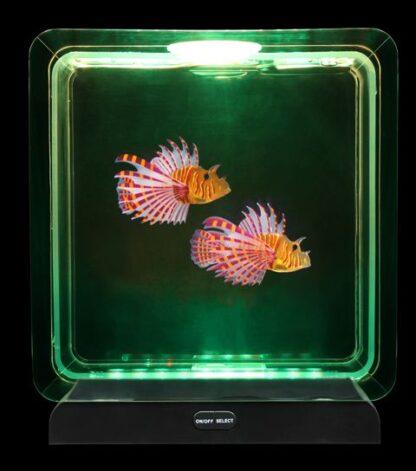 Vöödilise tiibkala akvaarium