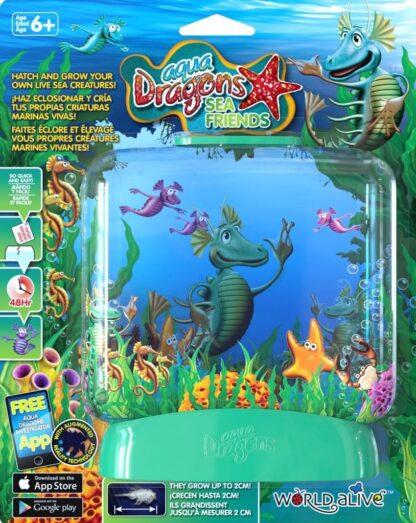 """Vesidraakonite kasvatus """"Akvaarium"""""""