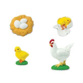 Kana elutsükkel mänguasi