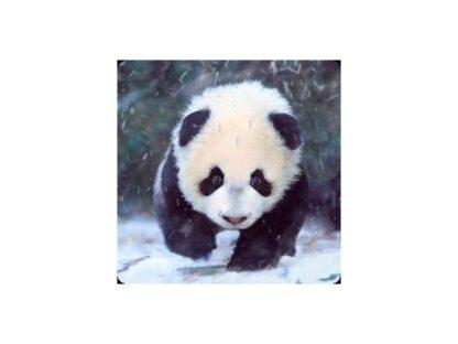 """3D Magnet """"Panda"""""""