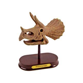 """Väljakaevamiskomplekt """"Triceratopsi kolju"""""""