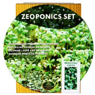 Brokoli taimekasvatus