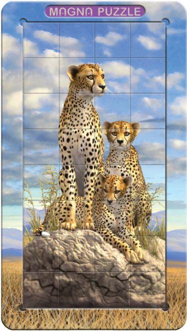 Magnetpusle Leopardid