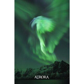"""3D postkaart """"Aurora"""""""