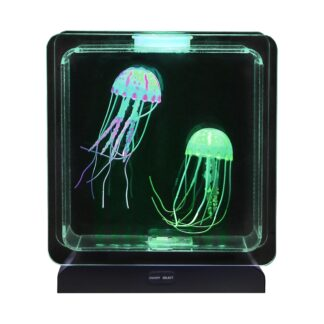 Meduuside akvaarium
